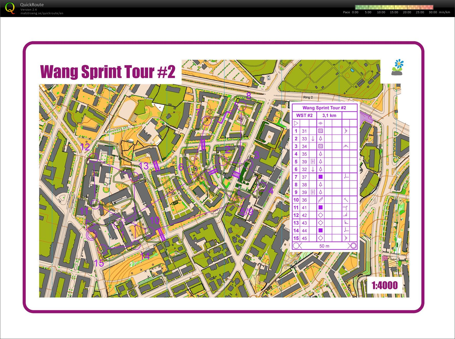 Wang open training Sprint (23.01.2019)